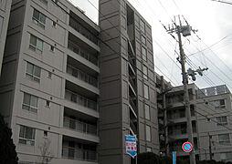 甲子園第8コーポラスA棟[A607号室]の外観