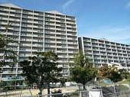 浅香山グリーンマンション[10階]の外観