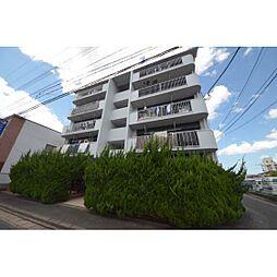 福岡県福岡市南区横手3丁目の賃貸マンションの外観
