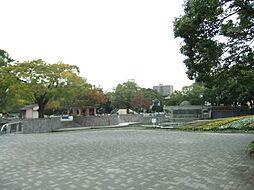 住吉公園(0m)