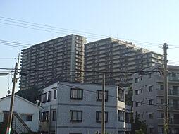グレーシィ須磨アルテピアIII番街[1階]の外観