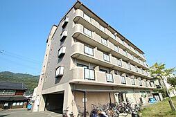 プラムグロウブ[4階]の外観