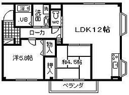 コーポ阪和[203号室]の間取り