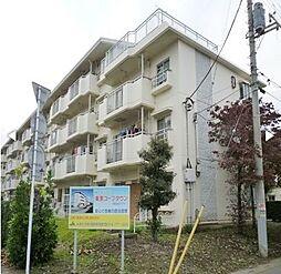 埼玉県上尾市錦町の賃貸マンションの外観
