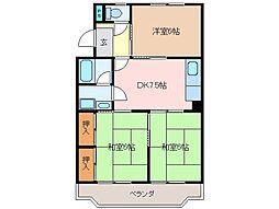 三重県松阪市大口町の賃貸マンションの間取り