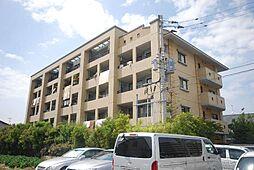 福岡県春日市上白水7丁目の賃貸マンションの外観