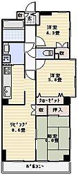 モナーク梅島[204号室]の間取り