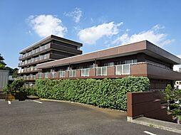 神奈川県横浜市保土ケ谷区岡沢町の賃貸マンションの外観