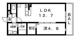 ドミソレイユII[206号室号室]の間取り