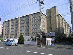 第3ファミール札幌[1階]の外観