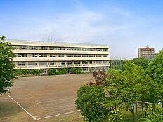 山崎中学校