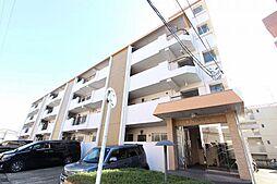 柴昭ハイツ[4階]の外観