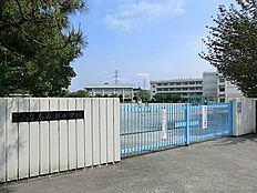 町田市立南成瀬中学校 距離約500m
