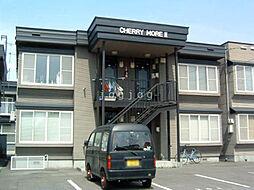 CHERRY MOREII