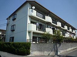 大阪府高槻市赤大路町の賃貸マンションの外観