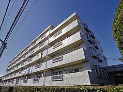 東京都練馬区大泉町1丁目の賃貸マンションの外観