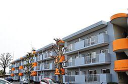サンハイツ寺尾[309号室号室]の外観