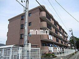 DM41[4階]の外観