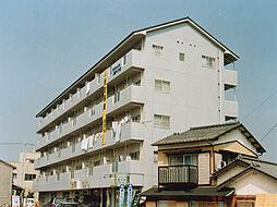 サンシャイン木村ハイツIII[402号室号室]の外観