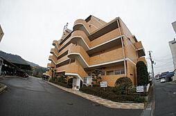 東山ハイツ[301号室]の外観
