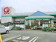 コメリハード&グリーン町田図師店