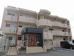 愛知県知多郡武豊町字梨子ノ木の賃貸マンションの外観