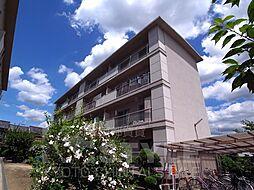 水戸田マンション[B105号室]の外観