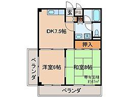 京都府京都市伏見区横大路下三栖山殿の賃貸マンションの間取り