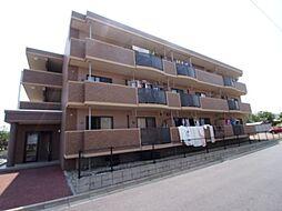 新潟県新潟市西区坂井の賃貸アパートの外観