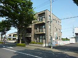 茨城県水戸市けやき台2丁目の賃貸マンションの外観