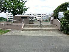 落合中学校 520m