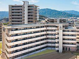 福岡市地下鉄七隈線 桜坂駅 徒歩14分の賃貸マンション