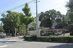 サムティキャナル神戸[2階]の外観