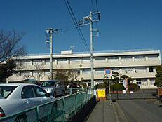 小学校水戸市立梅が丘小学校まで1471m
