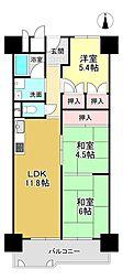 桂川ハイツ1号館