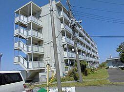 神奈川県横須賀市平和台の賃貸マンションの外観