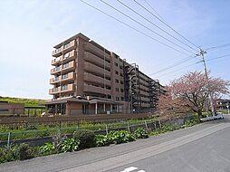 外観(分譲賃貸オートロックマンション)