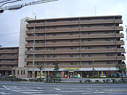 ウェルスMori[3階]の外観