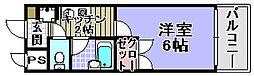 メゾン和泉[305号室]の間取り