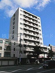 八条シャトー桂和[7階]の外観