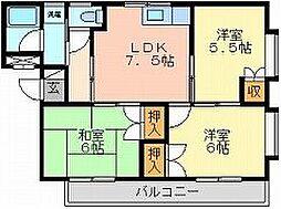 岡山県岡山市中区赤坂台の賃貸マンションの間取り