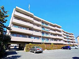 プリムローズ上福岡[2階]の外観