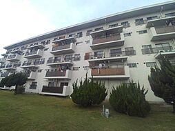 松が丘住宅 13号棟[206号室]の外観