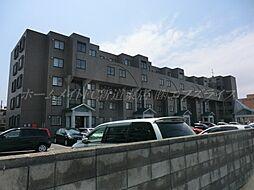 ベルマージュ522[4階]の外観