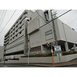 [一戸建] 静岡県浜松市中区中沢町 の賃貸【/】の外観