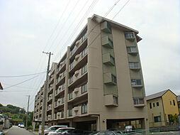 ルネ東辻井[205号室]の外観