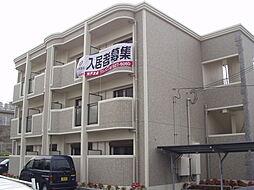 プラシード和坂[1階]の外観