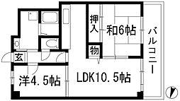 兵庫県伊丹市東野8丁目の賃貸マンションの間取り