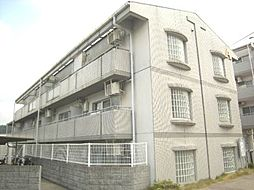 シティパレス東生駒P-3 A[2階]の外観