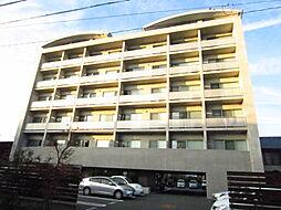 TERZO[2階]の外観